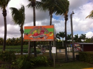 Robert's is Here.  A very well known stop just before the Everglades southern entrance.